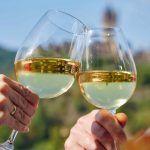 Am Rosenhügel Wein