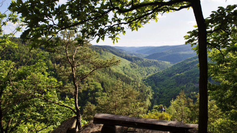 Blick in das Schwarzatal nahe Griesbachfelsen und Ingoklippe, Thüringen; 2017-05-25, © Dörthe Hagenguth/Zukunftswerkstatt Schwarzatal e. V.