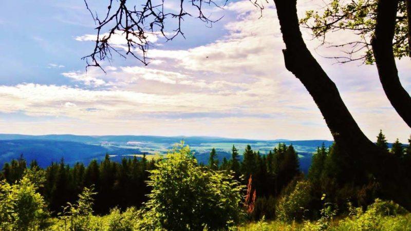 Flair Hotel Waldfrieden Blick von der Meuselbacher Kuppe