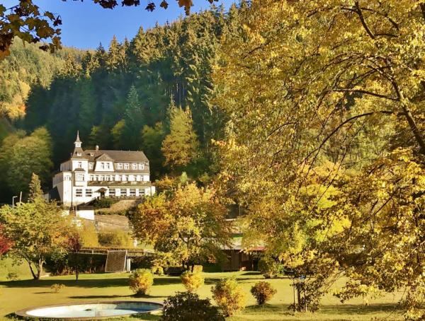 Flair Hotel Waldfrieden, Schwarzatal, außenansicht