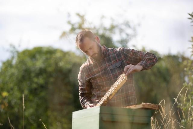 Alexander-Erck-vom-Flair-Hotel-Erck-mit-seinen-Bienen