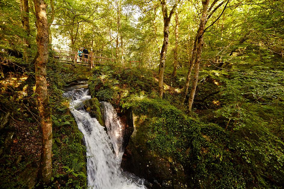 Der Wasserfall Rausch im Tal der wilden Endert
