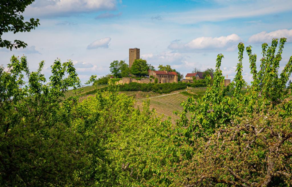 Die-Ravensburg-im-Kraichgau-ist-ein-tolles-Fotomotiv-beim-Urlaub-in-Deutschland