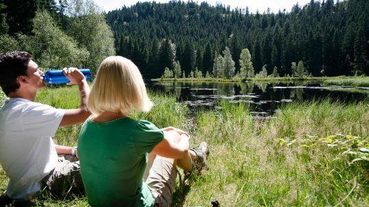 Bei einer Wanderung auf dem Baiersbronner Seensteig bietet sich eine Rast am Buhlbachsee an.