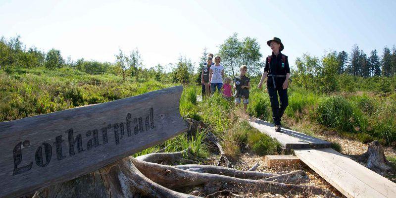 Der Seensteig führt auch zum Naturlehrpfad Lotharpfad in Baiersbronn.