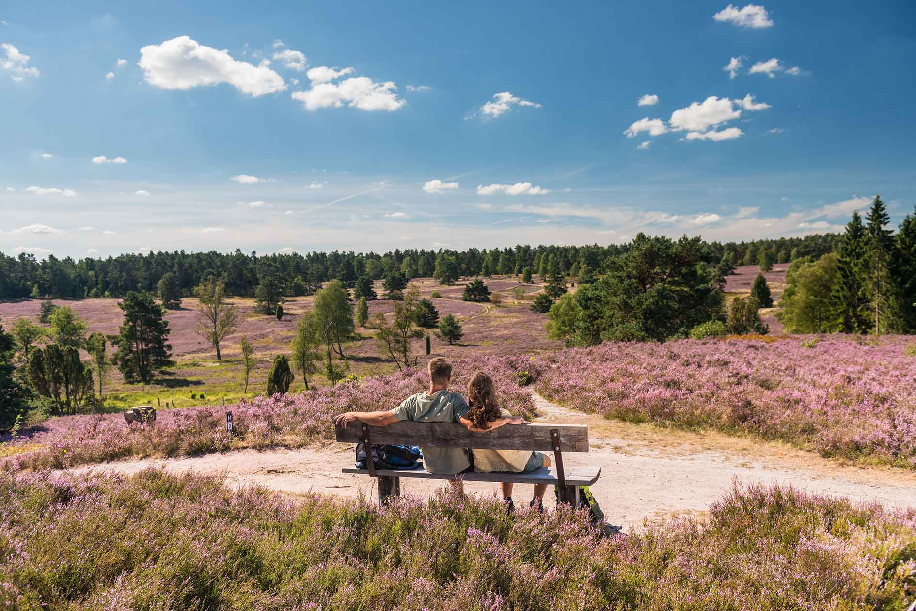 Paar auf Bank in Lüneburger Heide