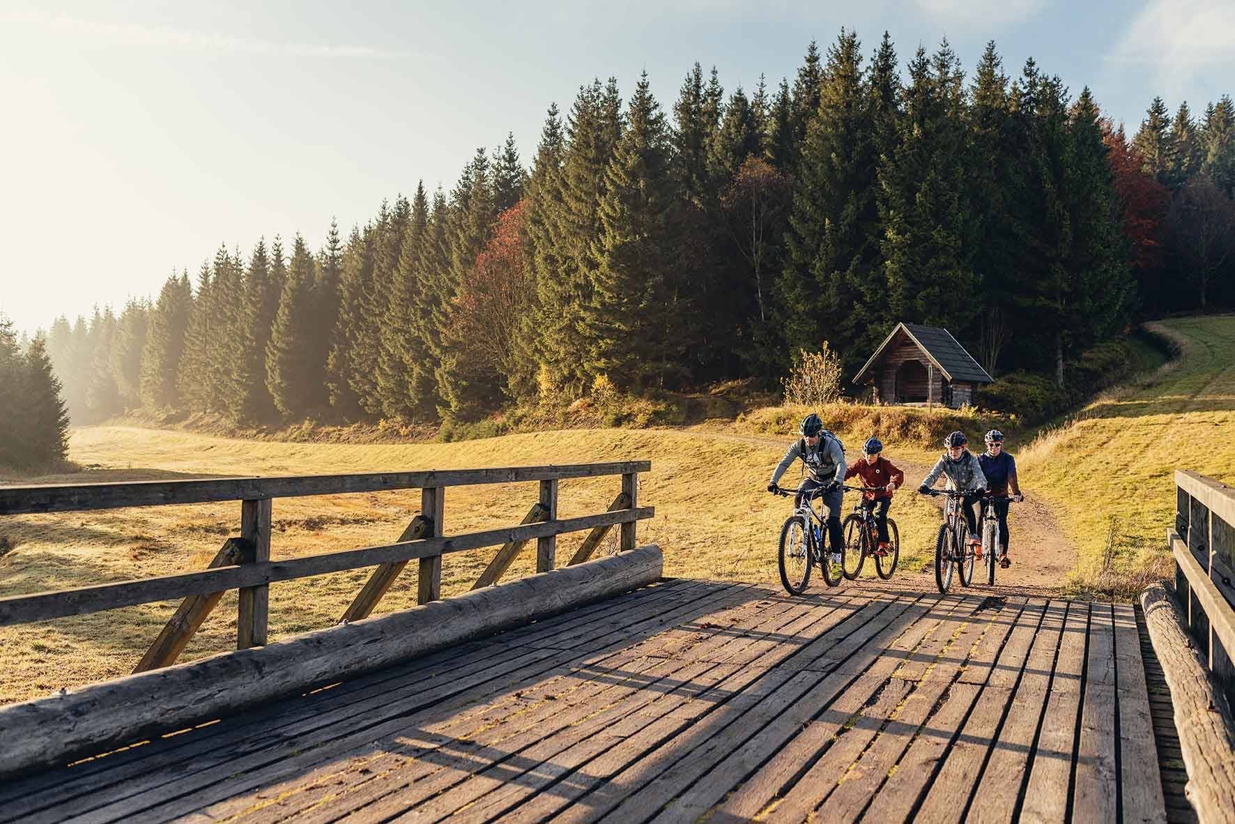 Fahrradfahrer in Berglandschaft