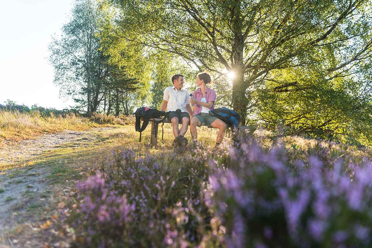 Paar in Lüneburger Heide