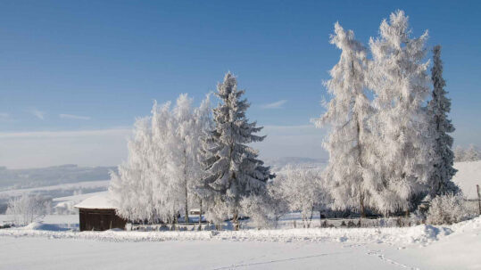 Winterurlaub Frankenwald Dobrachtal